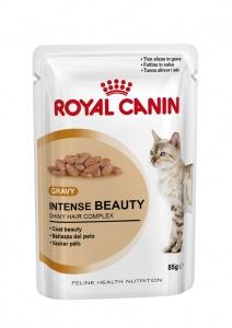 Каталог товаров :: Кошки :: Корм :: Ветеринарные диеты